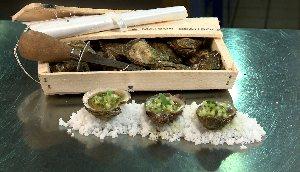 Huîtres à la vinaigrette d'agrume, gin, concombre et coriandre